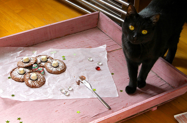 Cat and Christmas Cookies
