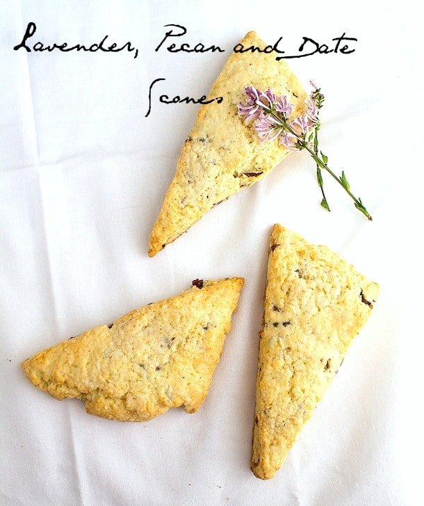 lavender, pecan and date scones