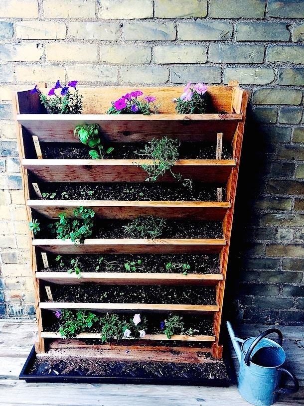 Vertical Gardening ~ Small Space Living