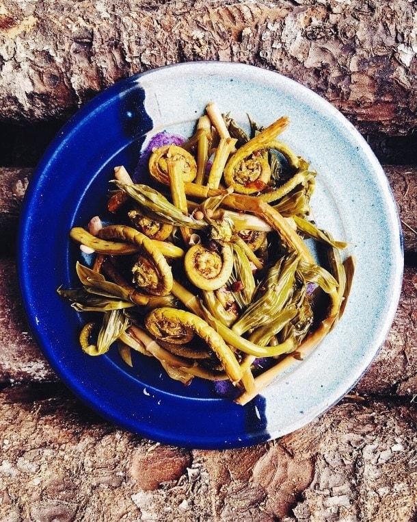 Pickled Fiddlehead Ferns & Twisted Stalk