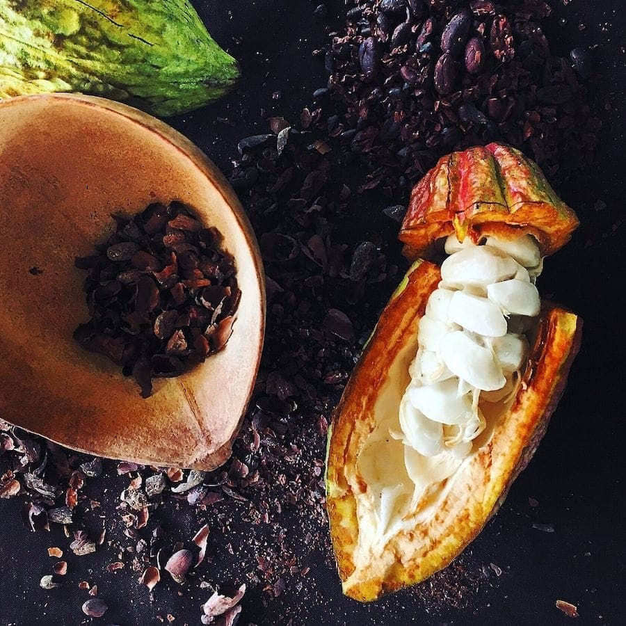 cacao pod & raw cacao beans
