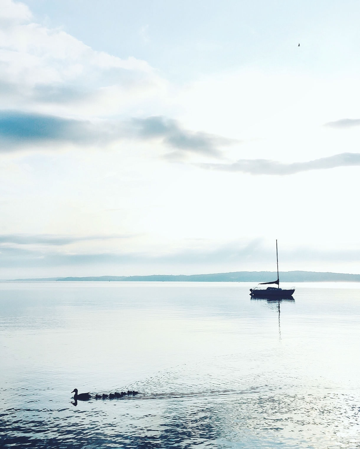 Summer in Traverse City, Michigan :: quiet early morning sunrise