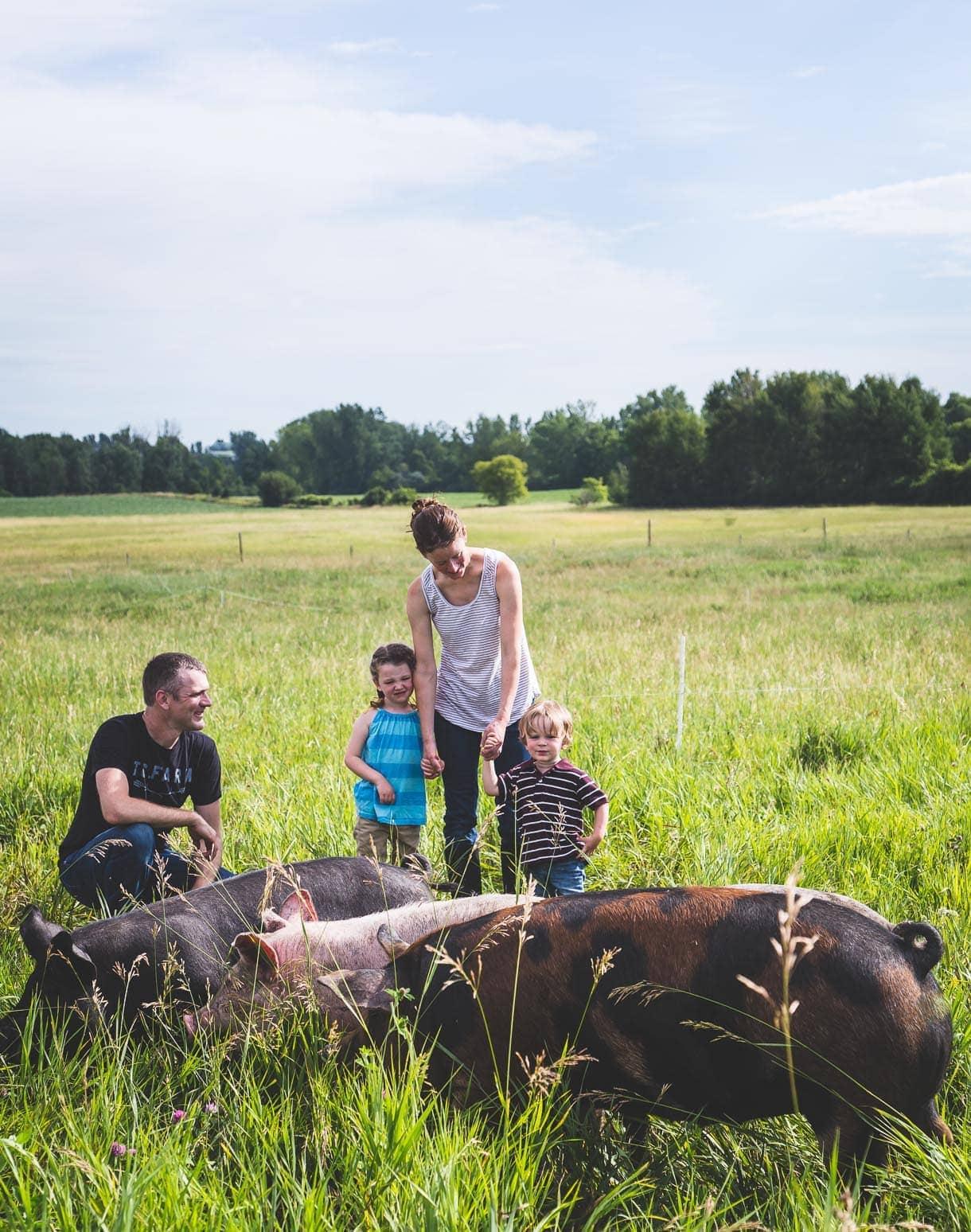 True Cost Farm - minnesota