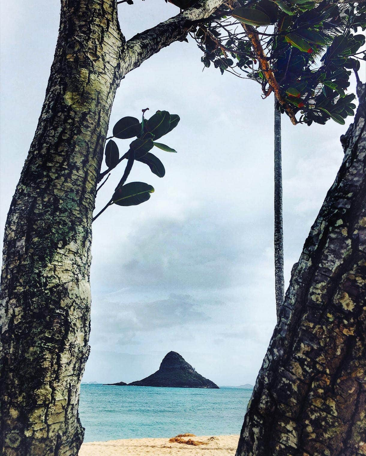 Chinaman's hat, Mokolii island, North Shore Oahu