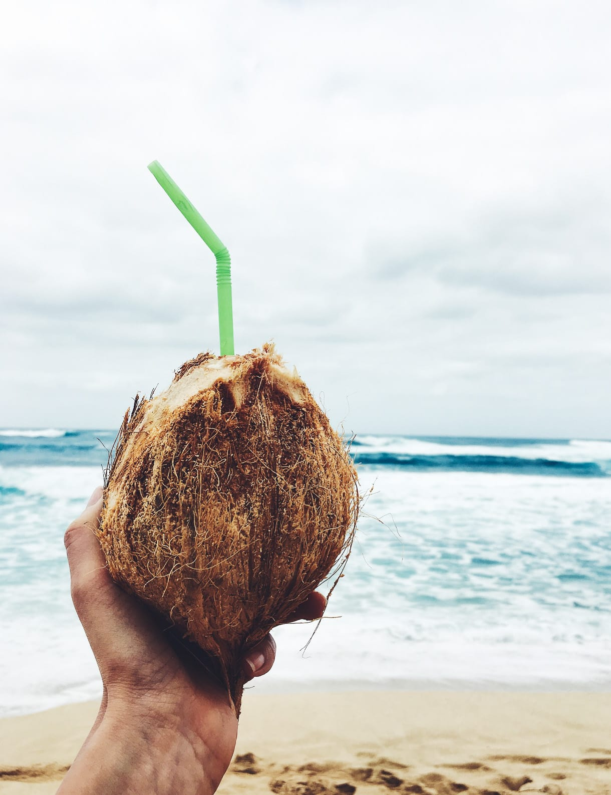 Fresh Coconut On The Beach -- North Shore, Oahu