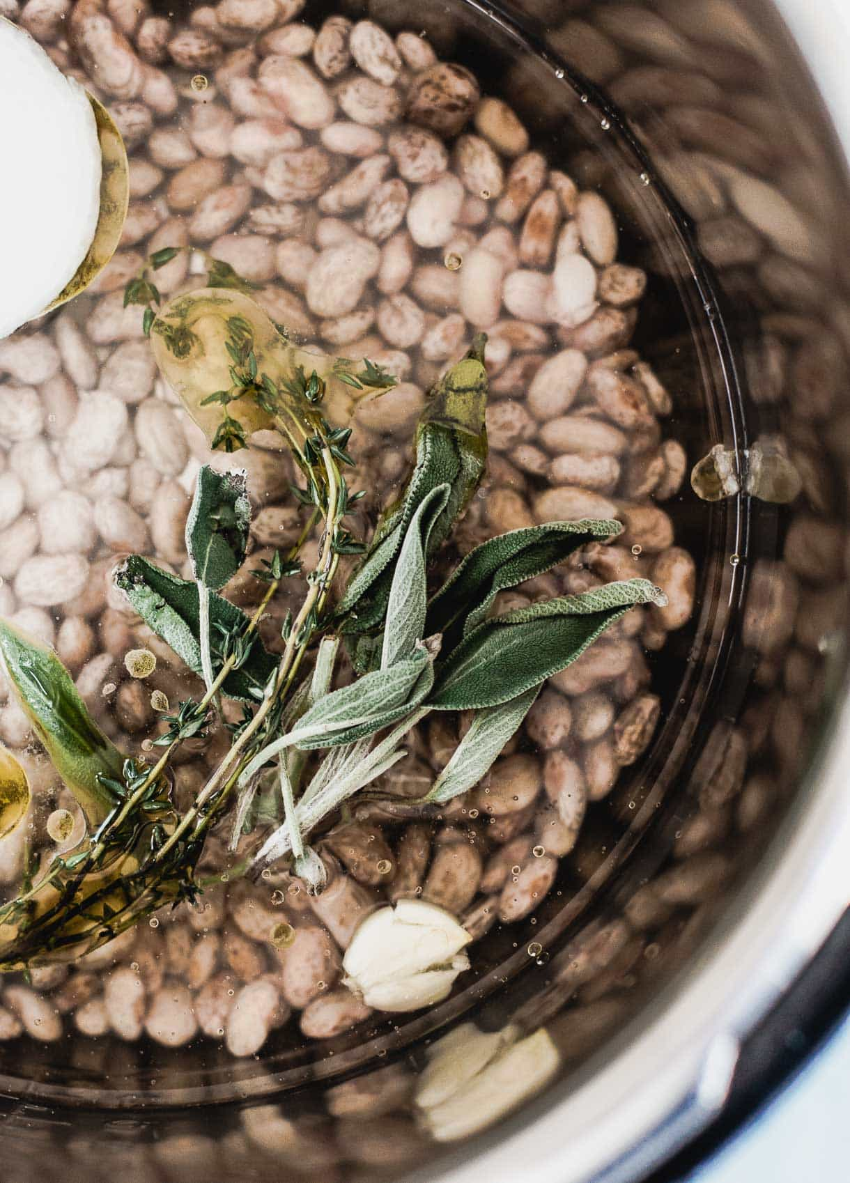 Vegetarian Instant Pot Pinto Beans. Great for meal prepping.