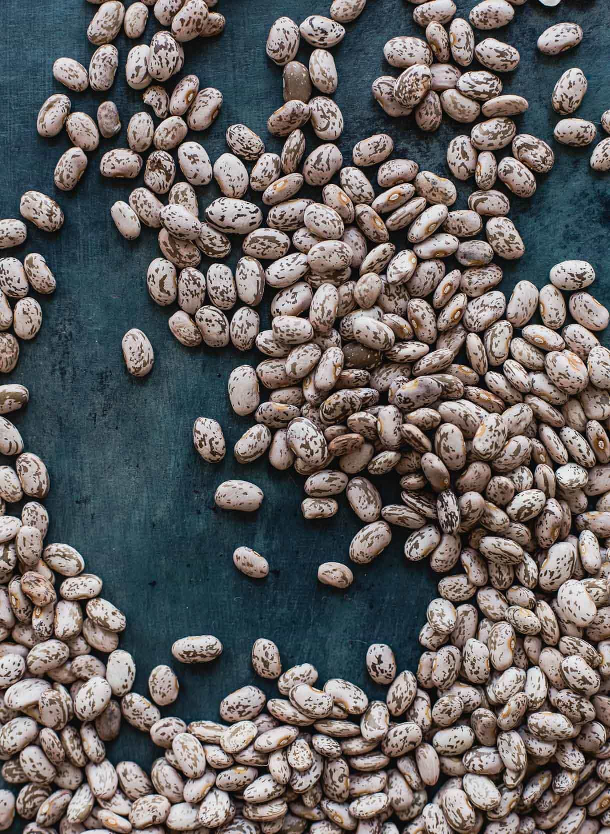 Photo of Pinto Beans