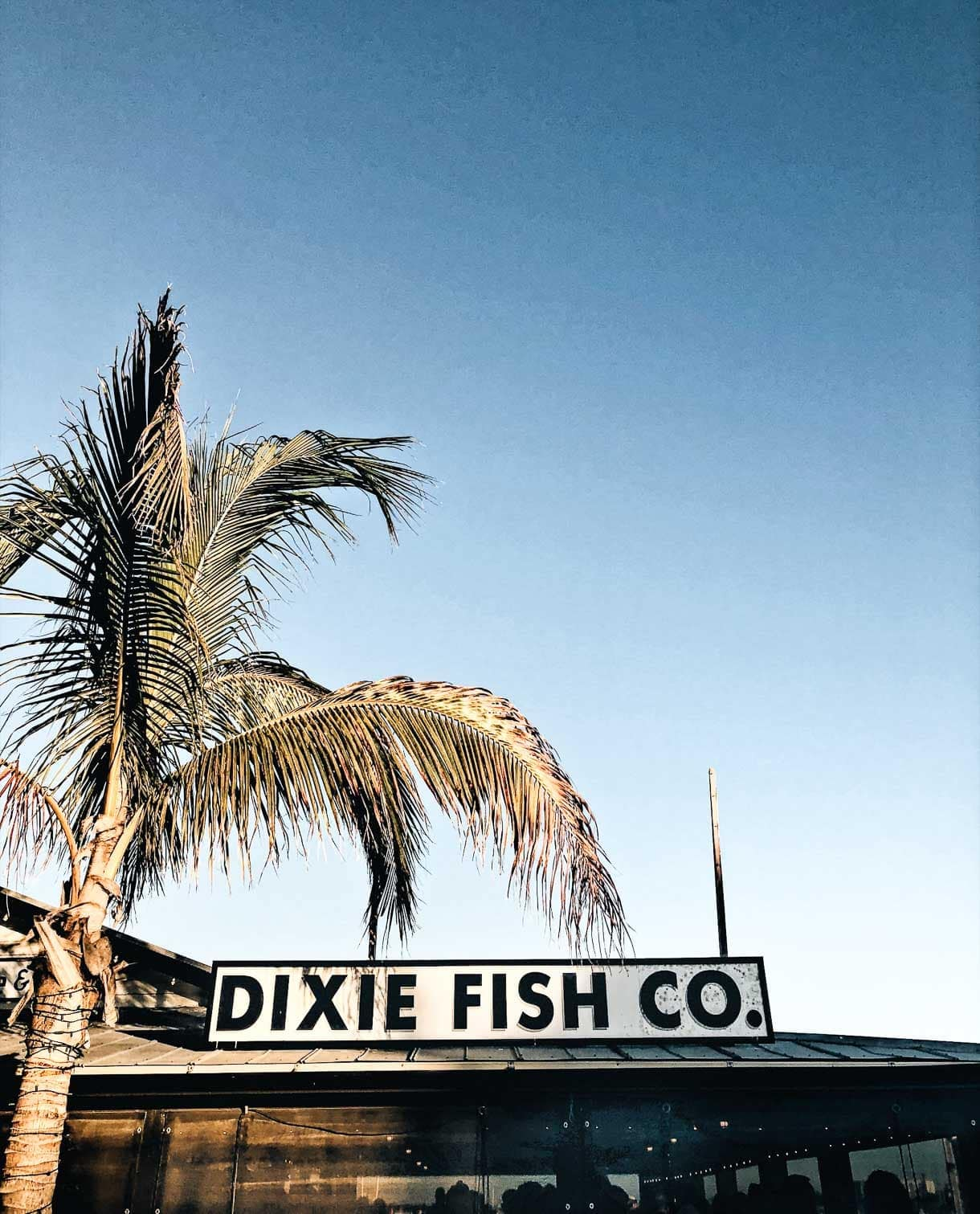 Local gems eight great places to eat in fort myers florida for Dixie fish company