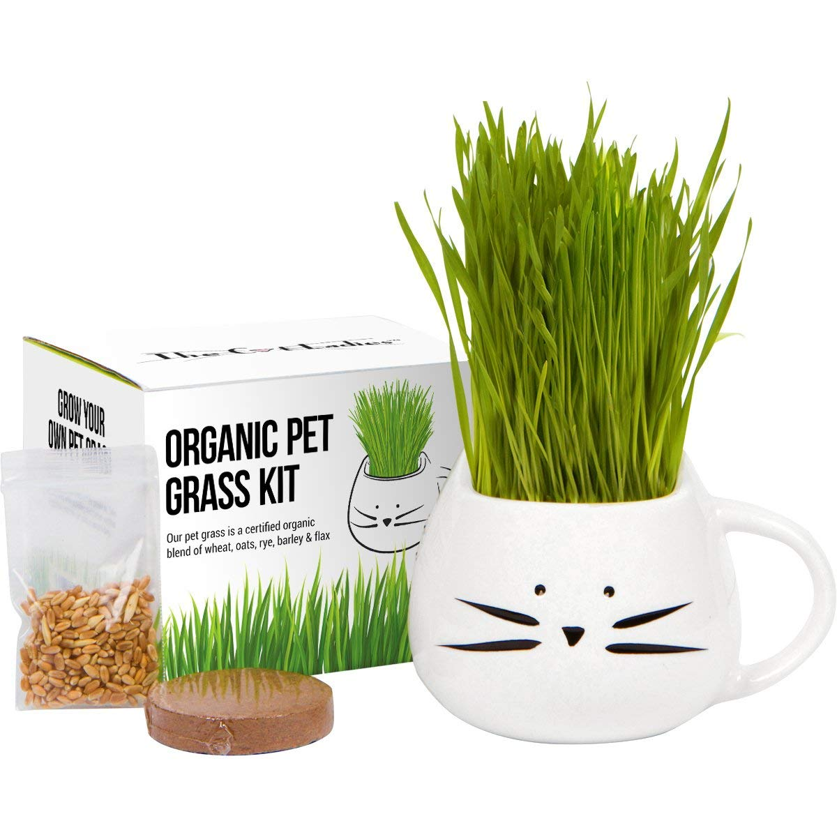 Organic Pet Grass Kit, Cat Grass