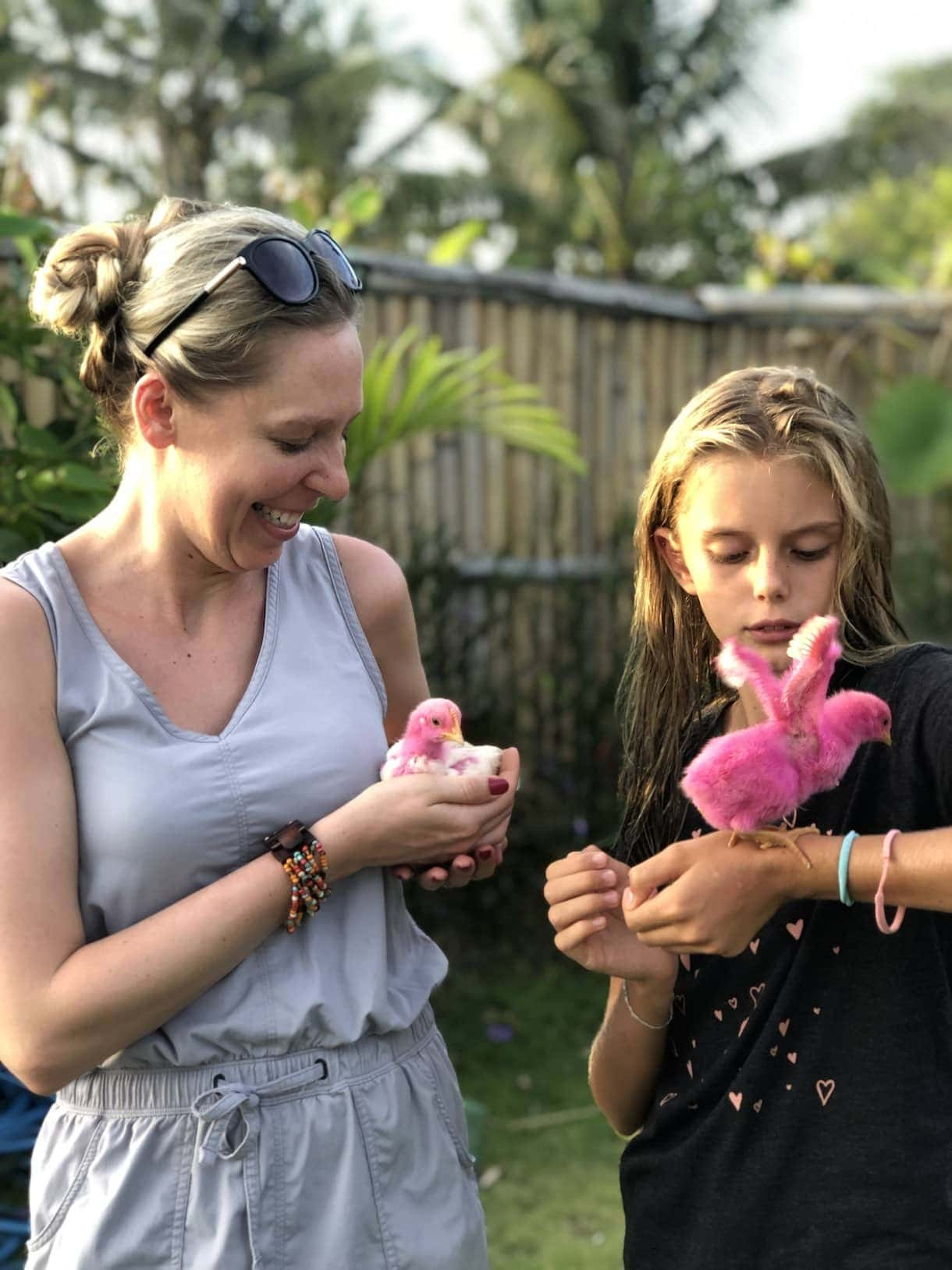 holding pink chickens
