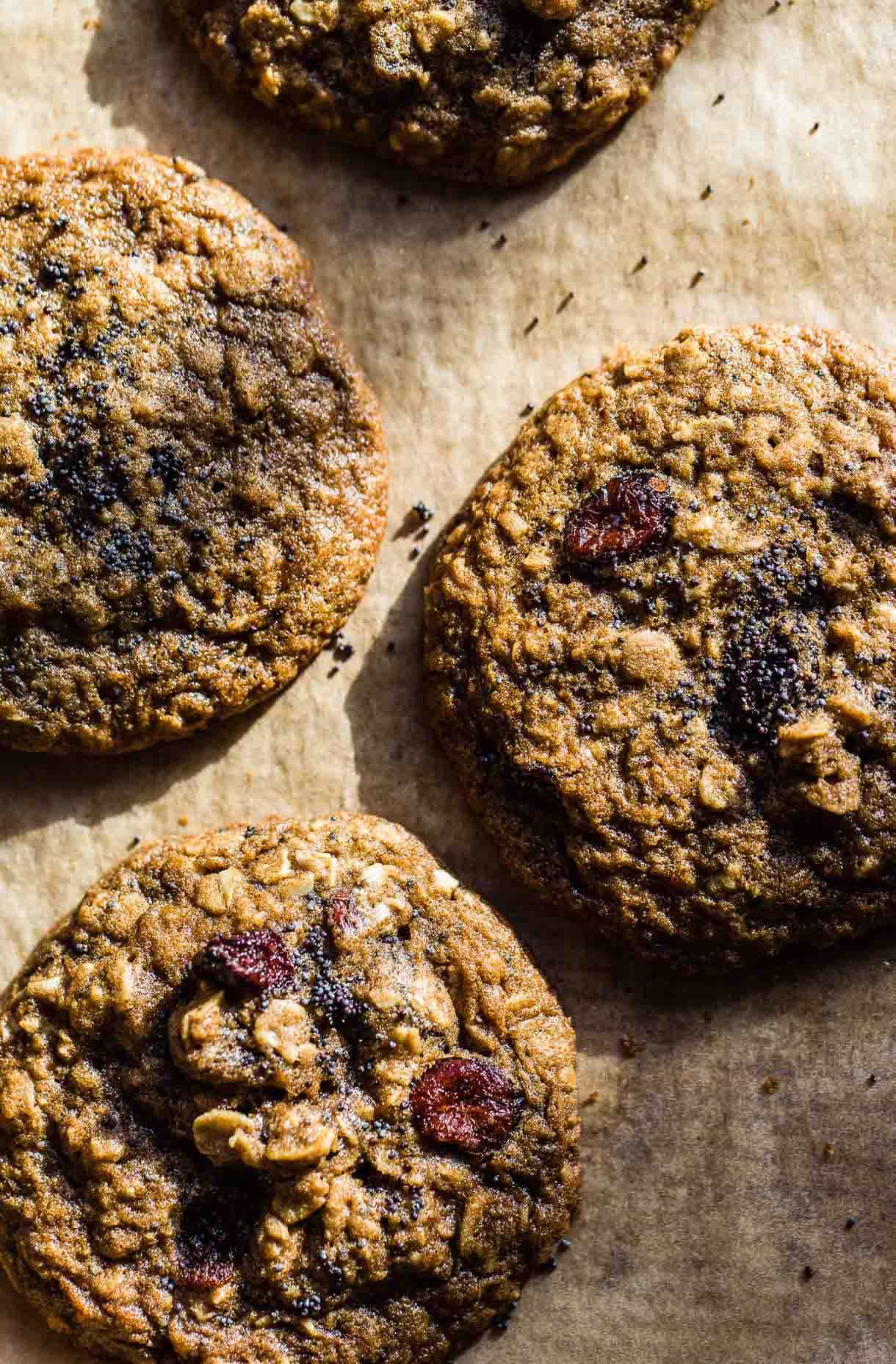 Cranberry Poppy Seed Gluten Free Oatmeal Cookies on baking sheet (recipe)
