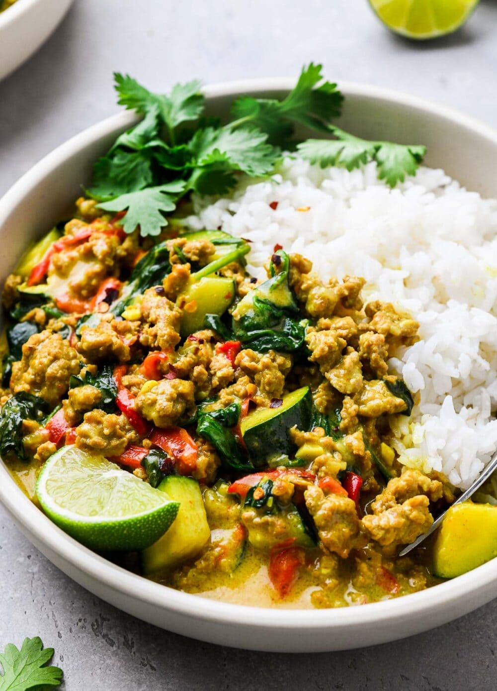 ground turkey curry in a bowl with white rice