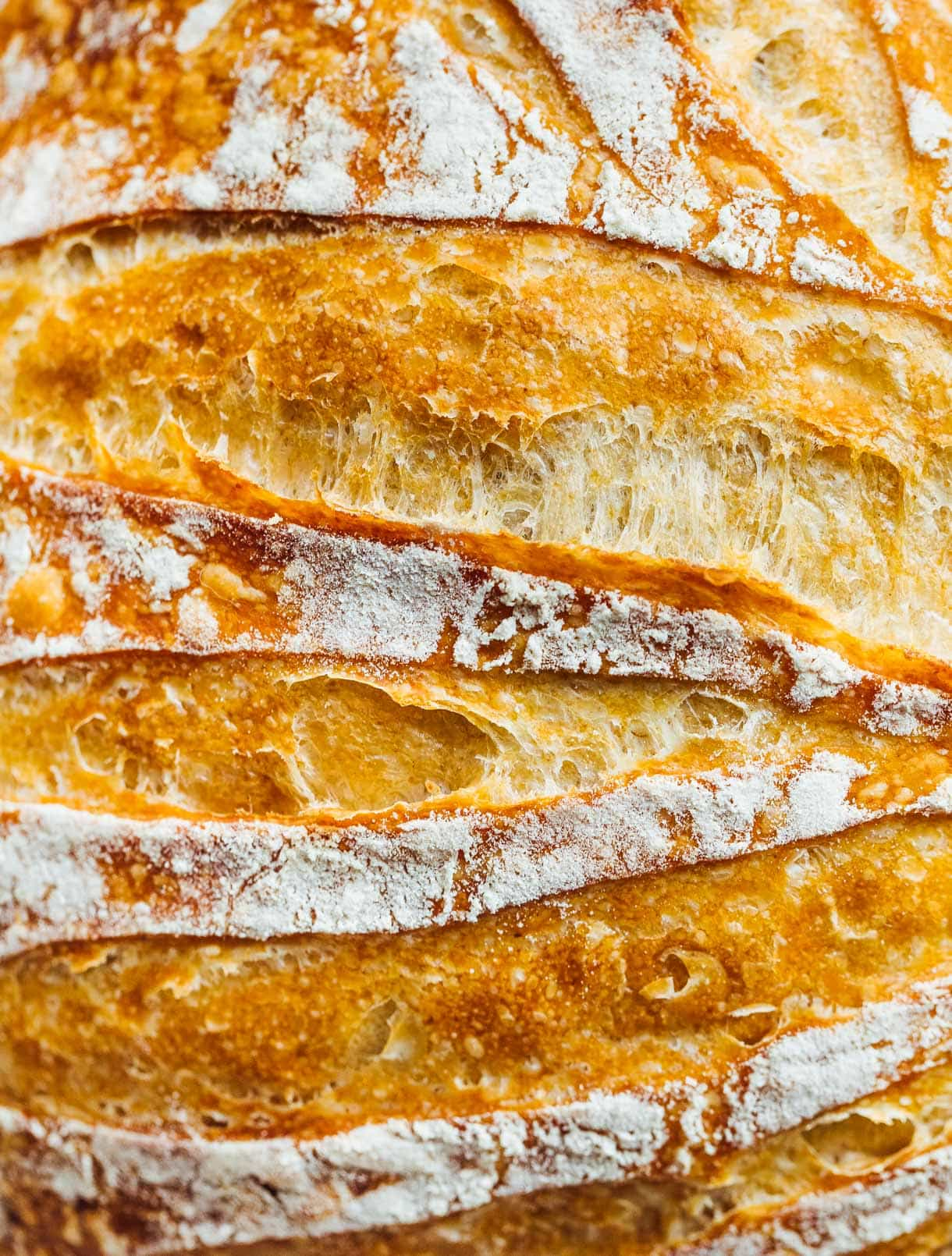 close up of sourdough bread loaf