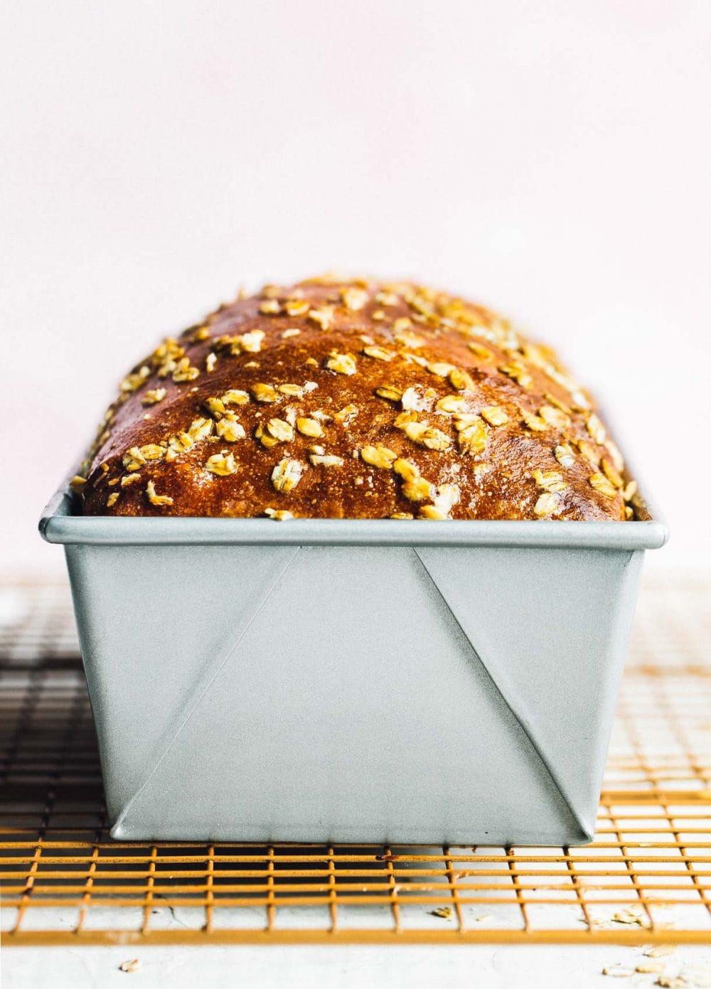 Whole Wheat sourdough sandwich bread in a loaf tin, baked.